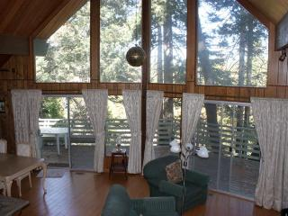 Perfect House with Deck and Internet Access - Lake Arrowhead vacation rentals