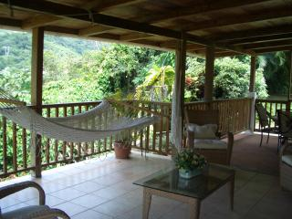 Perfect House with Internet Access and A/C - Jayuya vacation rentals