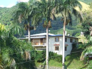 Perfect House with Internet Access and Garage - Jayuya vacation rentals