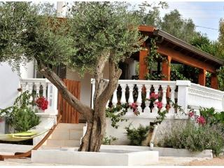 Villa Sleeps 6 with Private Pool - Ceglie Messapica vacation rentals