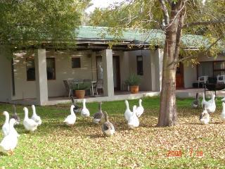 Volstruisvlei Guest House & Kokkedoor Stoor - Prince Albert vacation rentals