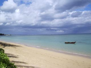 Punaluu Beach 1bd/1ba Condo, #401 - North Shore vacation rentals