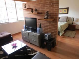 Spectacular loft like studio, Business District! - Colombia vacation rentals