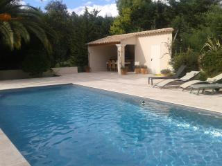 Lovely villa in beautiful village near Cannes - Tourrettes-sur-Loup vacation rentals