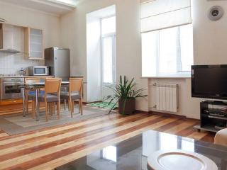 Nevsky Prospekt 66 Anichkov bridge 1 Bedroom Apartment - Saint Petersburg vacation rentals