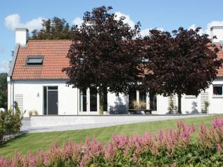 Uniqe Holiday Home 10-12 P. near Amsterdam. - Noordwijk vacation rentals