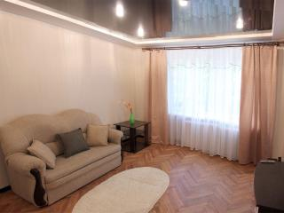 VIP  apartment in the heart of Minsk  for  rent - Minsk vacation rentals