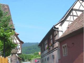 Beautiful Cottage with Internet Access and Television - Niedermorschwihr vacation rentals