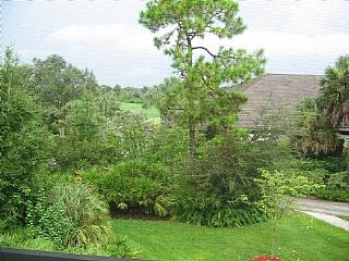 Wild Pines - Bonita Bay A-303 - Bonita Springs vacation rentals