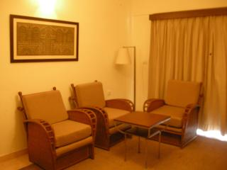 Luxurious Fully Furnished A/C Apartment With Swimm - Goa vacation rentals