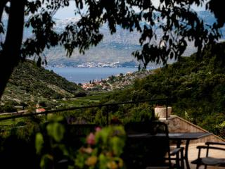 200 Years Charming Old Stone Villa; Brac Island - Postira vacation rentals