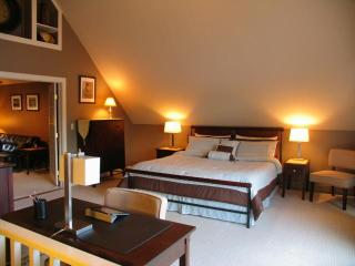 Luxurious Apartment on The River with kitchette - Manchester vacation rentals