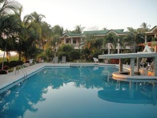 Beautiful Ocean Front Condo - Guanacaste vacation rentals