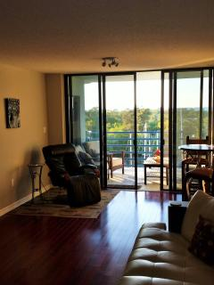 Gulfront Condo with spectacular sunsets - Port Richey vacation rentals