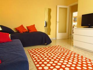 Charming penthouse in central Rome - Lido dei Pini vacation rentals