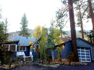 REINDEER COTTAGE 3BR, Mountain Views, Deck, Sauna - Wrightwood vacation rentals