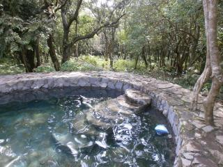 Mother Nature's Kiva Condo, very special just 4 U - La Fortuna de Bagaces vacation rentals