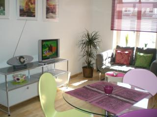 Lovely 2-room-downtown apartment - Freiburg im Breisgau vacation rentals