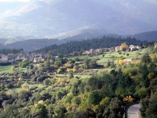 Cévennes, au pied du Mt Lozère - Aujac vacation rentals