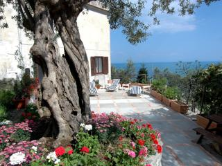 Villa Michelle In Amalfi - Amalfi Coast vacation rentals