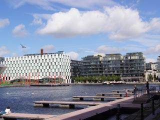 Perfect 2 bedroom Apartment in Dublin - Dublin vacation rentals