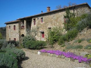 DREAM LOCATION IN CHIANTI:  POOL, GARDEN, PRIVACY - Gaiole in Chianti vacation rentals