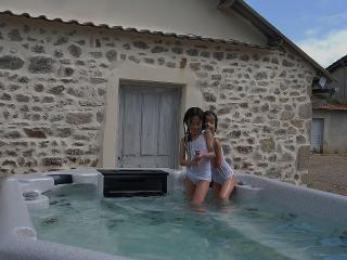 Renovated house dates 1809 with group facilities - Saint Priest des Champs vacation rentals