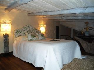 LE CABANON : LOVELY FRENCH COTTAGE IN THE HILLS OF SANTA ANA,  MAGNIFICIENT VIEWS, SUPER COMFORTABLE - Santa Ana vacation rentals