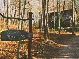 'Treetops' in the North Ga Mountains.  With WIFI! - Rabun Gap vacation rentals