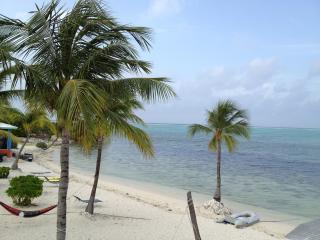 Oceanfront kitchenette on a white sandy beach - Little Cayman vacation rentals