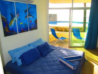 PSMLGC  Oceanfront  Apartment - Cozumel vacation rentals