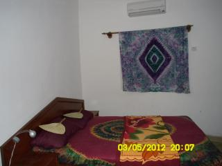Cozy 1 bedroom Banjul Apartment with Internet Access - Banjul vacation rentals