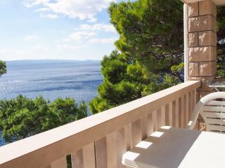 Frontbeach Studio Apartment BRDRAZ-A1(2+0) - Brela - Brela vacation rentals