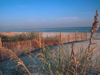 BEST DEAL!  Gulf View, Pool, Jacuzzi! - Gulf Shores vacation rentals