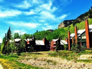 Gorgeous Mountain Condo - Fully Renovated - Views! - Durango vacation rentals