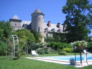 Romantic Dordogne Chateau with pool - Dordogne Region vacation rentals