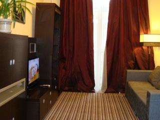 Cheap two-room flat in the center, free WI-FI - Ukraine vacation rentals
