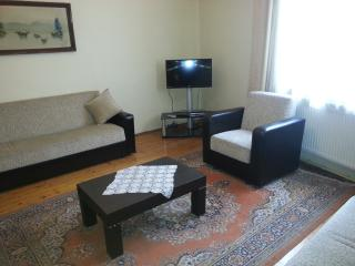 Apart in Sultanahmet2 - Istanbul vacation rentals