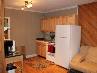 Super Cute- Ski in/ Ski Out - Remodeled 1 bed Sleeps 6 (107) - Brian Head vacation rentals