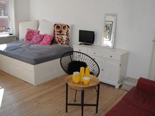 Nice bright Copenhagen apartment near Noerrebro station - Copenhagen vacation rentals
