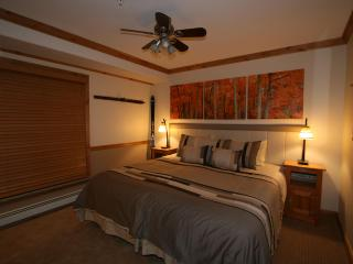 Platinum rated, newly remodeled with 2 hot tubs - Vail vacation rentals