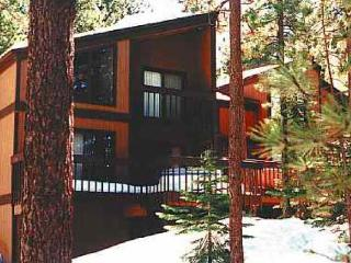 Tahoe Lake Village 58 Burke Creek Circle NV (BCC58 - Jacksonville vacation rentals