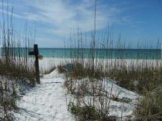 PASS-A-GRILLE FLORIDA, ST. PETE BEACH HOUSE for 14 - Saint Pete Beach vacation rentals