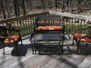 Brand New, Custom Made Beautiful House In the Heart of Pocono's! - Tobyhanna vacation rentals