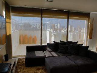 Luxury Duplex Penthouse near Ibirapuera Park - Barueri vacation rentals
