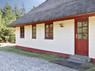 Danmark -  Blaavand- Danmarks vestligste feriested - Blaavand vacation rentals
