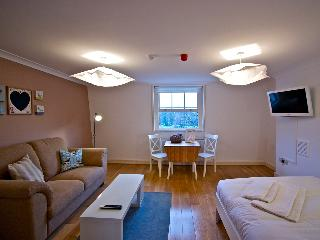 Fresh serviced studio in Angel - London vacation rentals