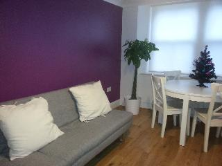 Lively 1 bed serviced flat in Angel - London vacation rentals