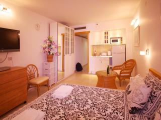Great lodging for little money - Netanya vacation rentals
