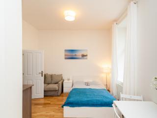 Lovely apartment on the Vltava bank - Bohemia vacation rentals